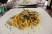 freshly made pasta with lamb ragout and deep-fried artichokes